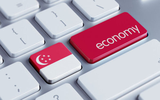 Shocks and Downfalls of Singapore Economy